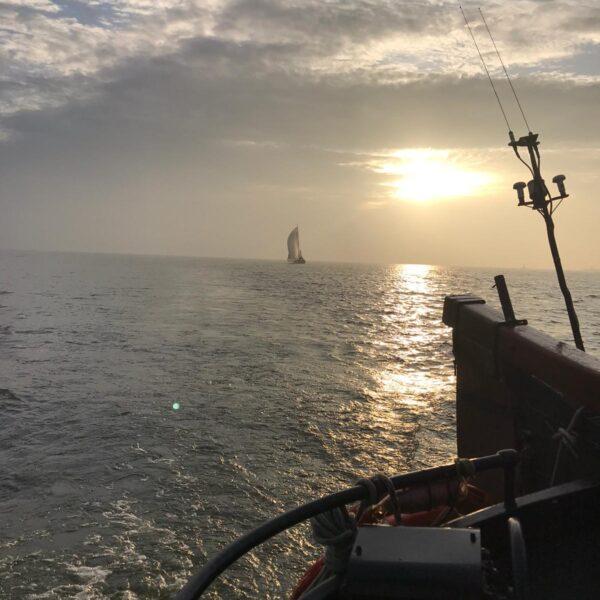 ochtendgloren@Gouden Vloot